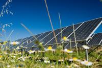 solar_wiese.jpg